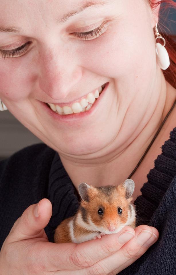 Hamster Horst